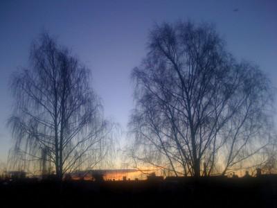 utanför mitt fönster